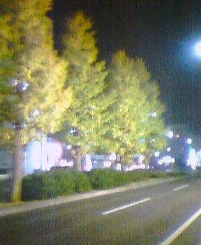 20041109_2059_0000.jpg